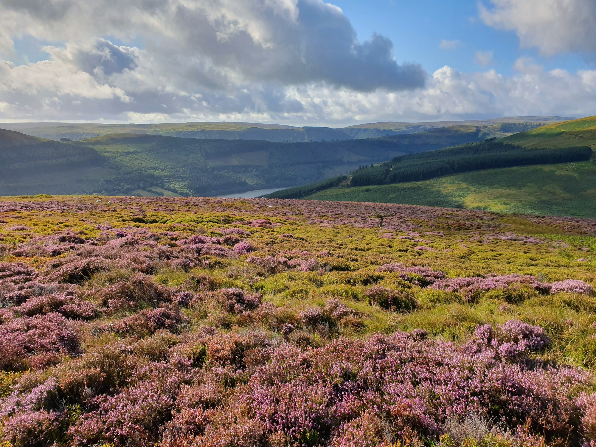 Brecon Beacons – National Park of Wales